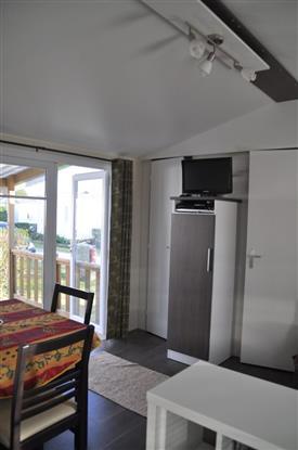 salon - TV
